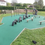 Play area Safety Inspectors in Alvanley 4